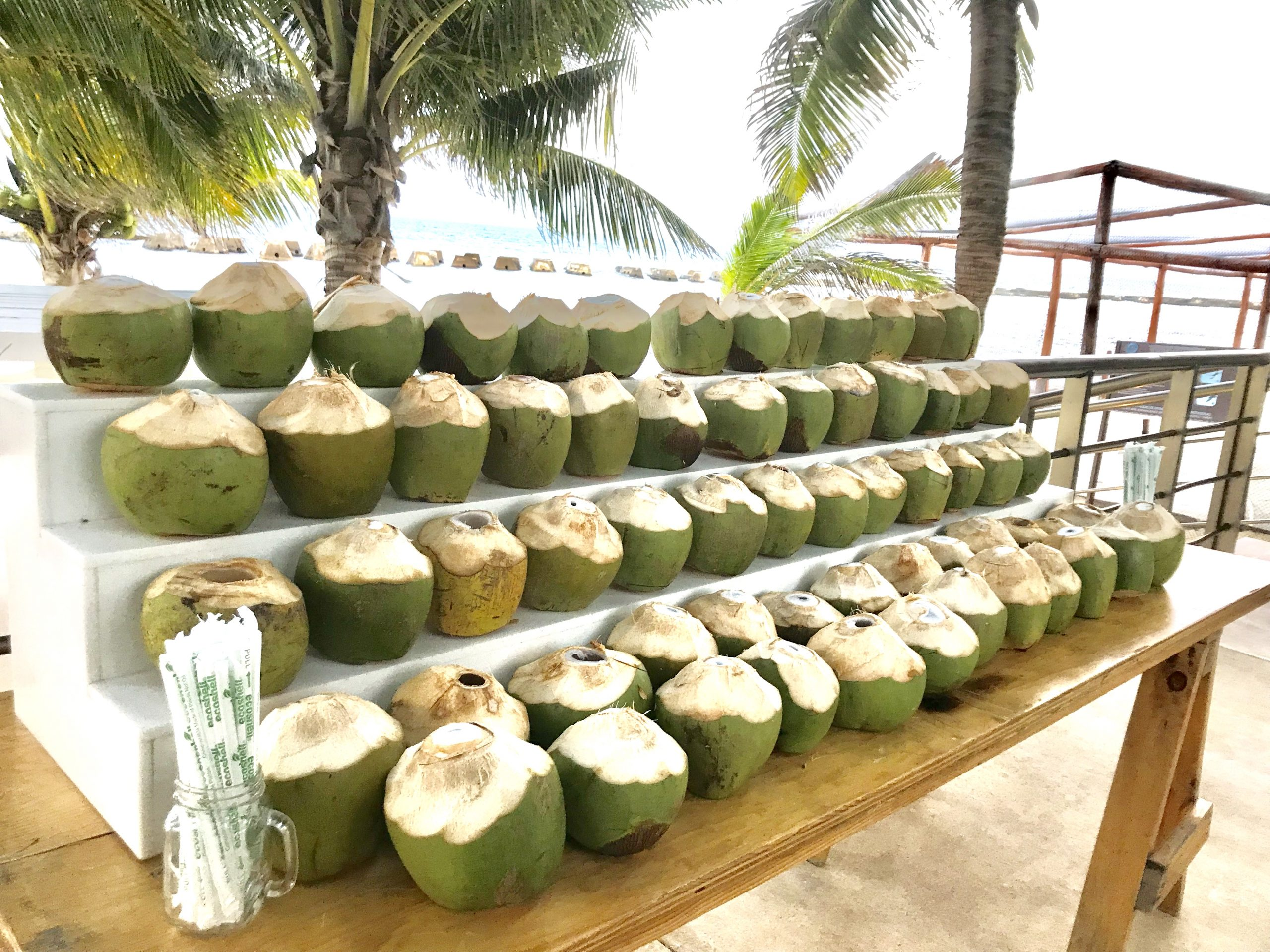 coconuts cost for a destination wedding in cancun by latin asia one stop solution